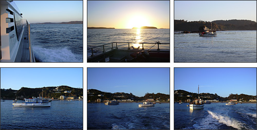 In and out of Halfmoon Bay, Stewart Island