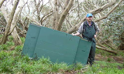 Carrying parts of the hide up the hill
